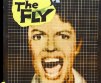 """""""On The Fly"""" Part Two: Disintegration"""